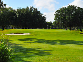Book a Tee Time at Pebble Creek